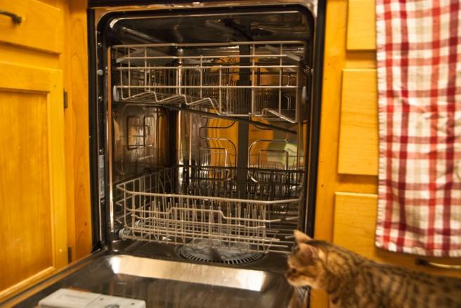 2-11-2015 Dishwasher