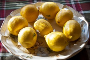 2-13-2015 Lemons